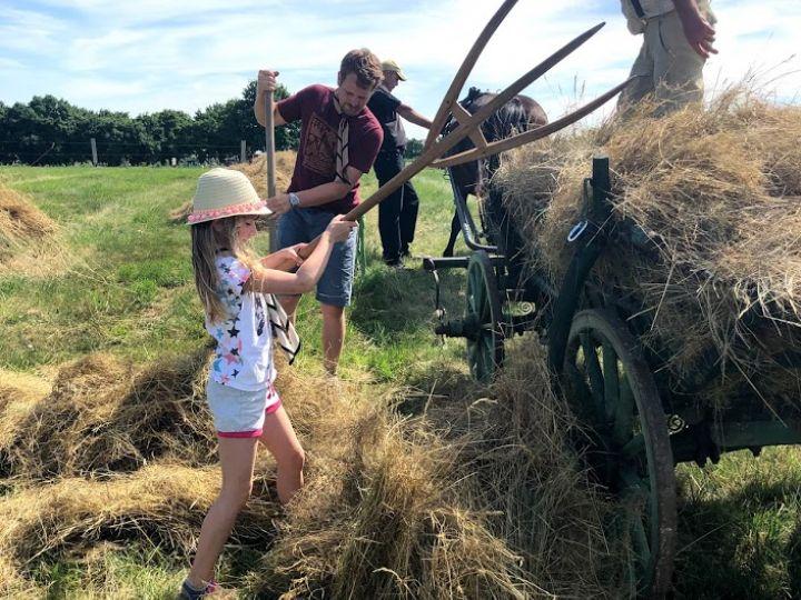 Cserkészek táboroztak és ismerkedtek a hagyományos szénakészítéssel